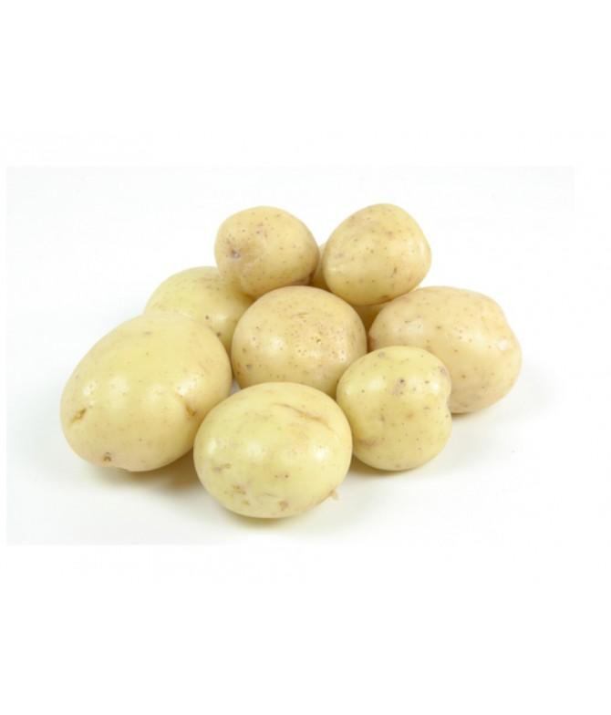 Misket Patates