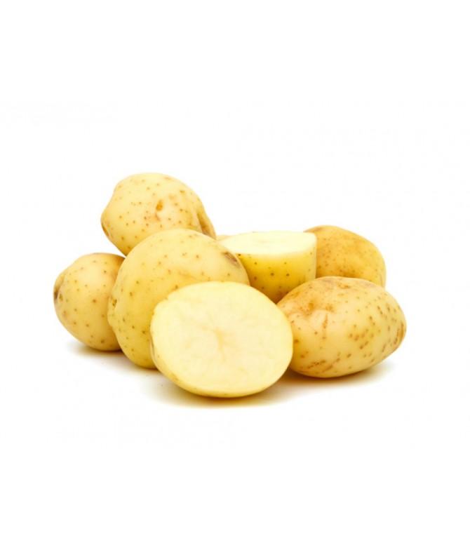 Patates Agria Sarı