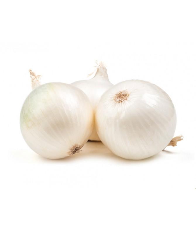 Soğan Kuru Beyaz